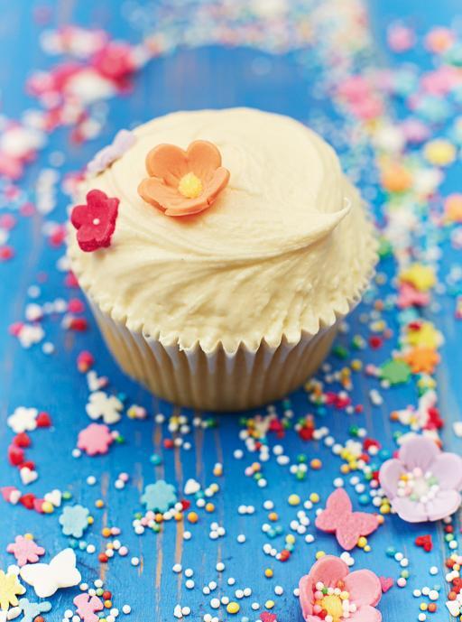 vanilla fudge vegan cupcakes