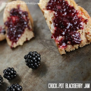 Crock-pot-Blackberry-Jam