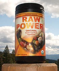 raw power vegan protein powder
