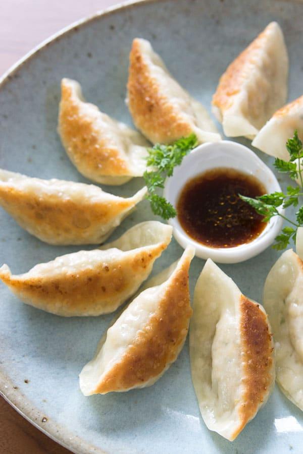 tofu potstickers