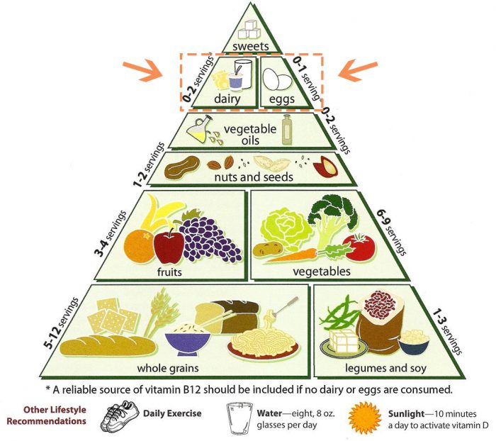 The difference between a vegan and vegetarian... Image of the food pyramid sans meat.
