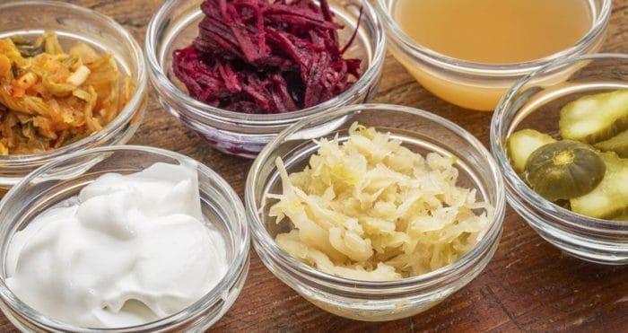 vegan probiotics sources img