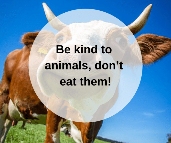 Be kind to animals, don't eat them!