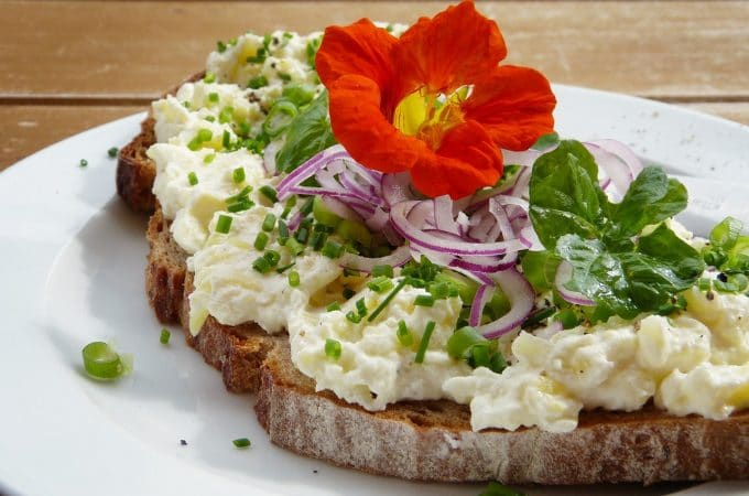 bread with cheese, onions, nasturtium on top
